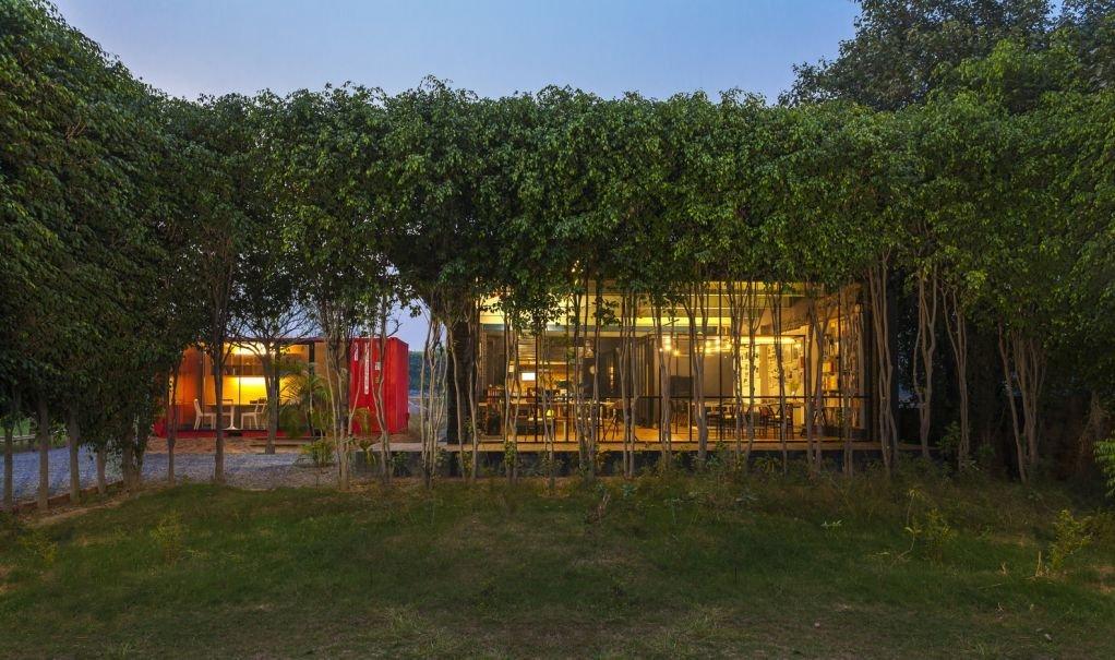 Cây xanh được tạo ra thành hình lưới trước nhà