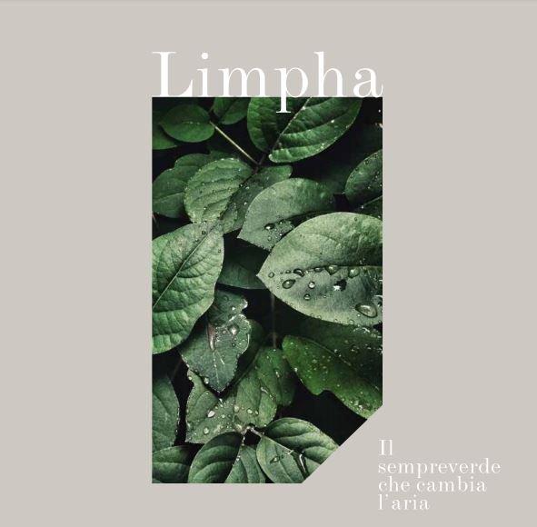 Bộ sưu tập Limpha gạch ốp lát kháng khuẩn