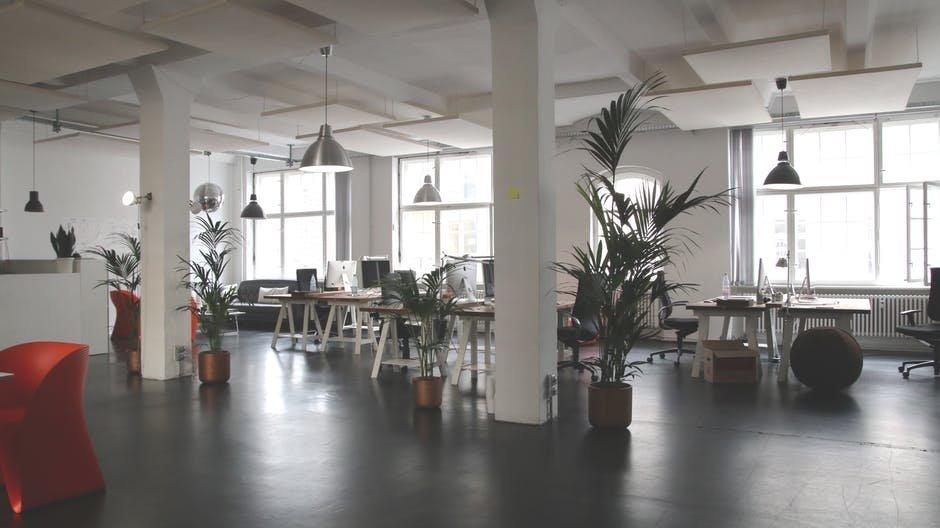 Đem thiên nhiên vào trong phòng làm việc
