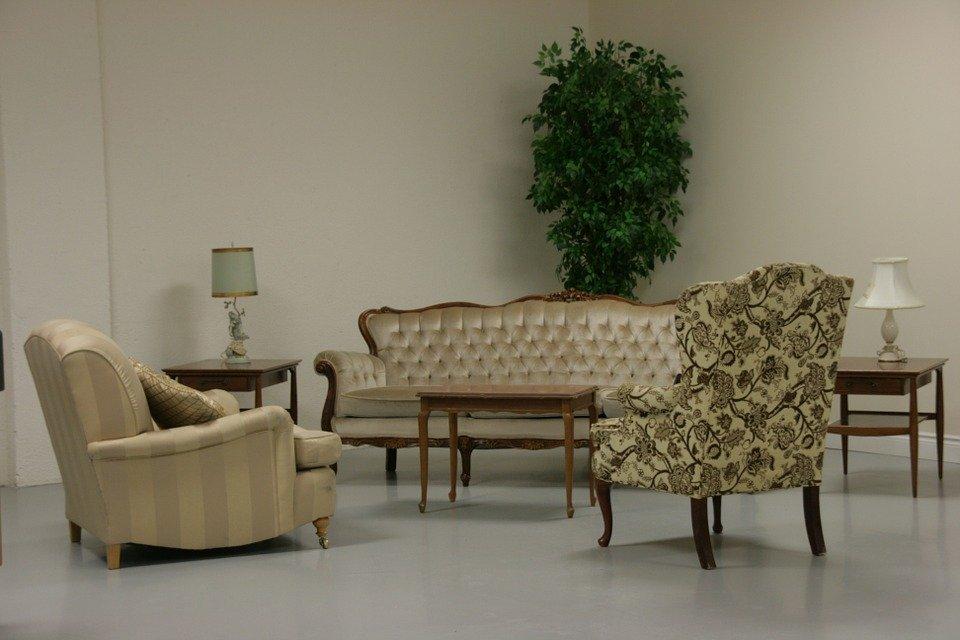 Sử dụng cây xanh trong trang trí nội thất phòng khách